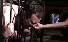 slave joschi get extreme humiliated in cage